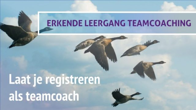 complete opleiding voor teamcoaches